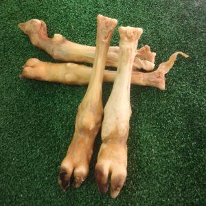 pata de cordero para perros